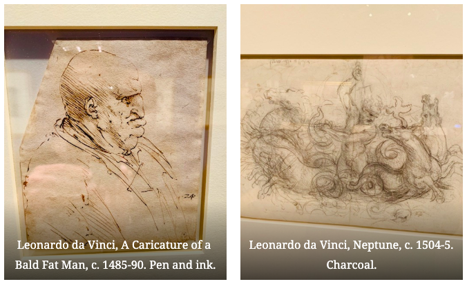 Photos of Da Vinci's drawing from the Queen's Gallery exhibition