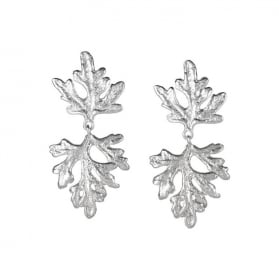 Summer Dreaming Small and Medium Leaf Earrings